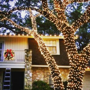 LED Holiday Lighting